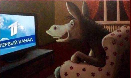 Осел перед телевизором